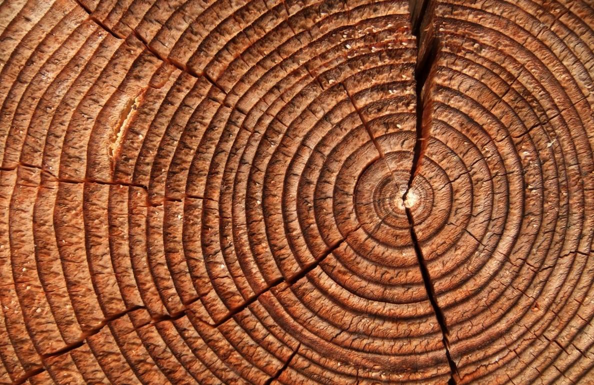 Wood Detail