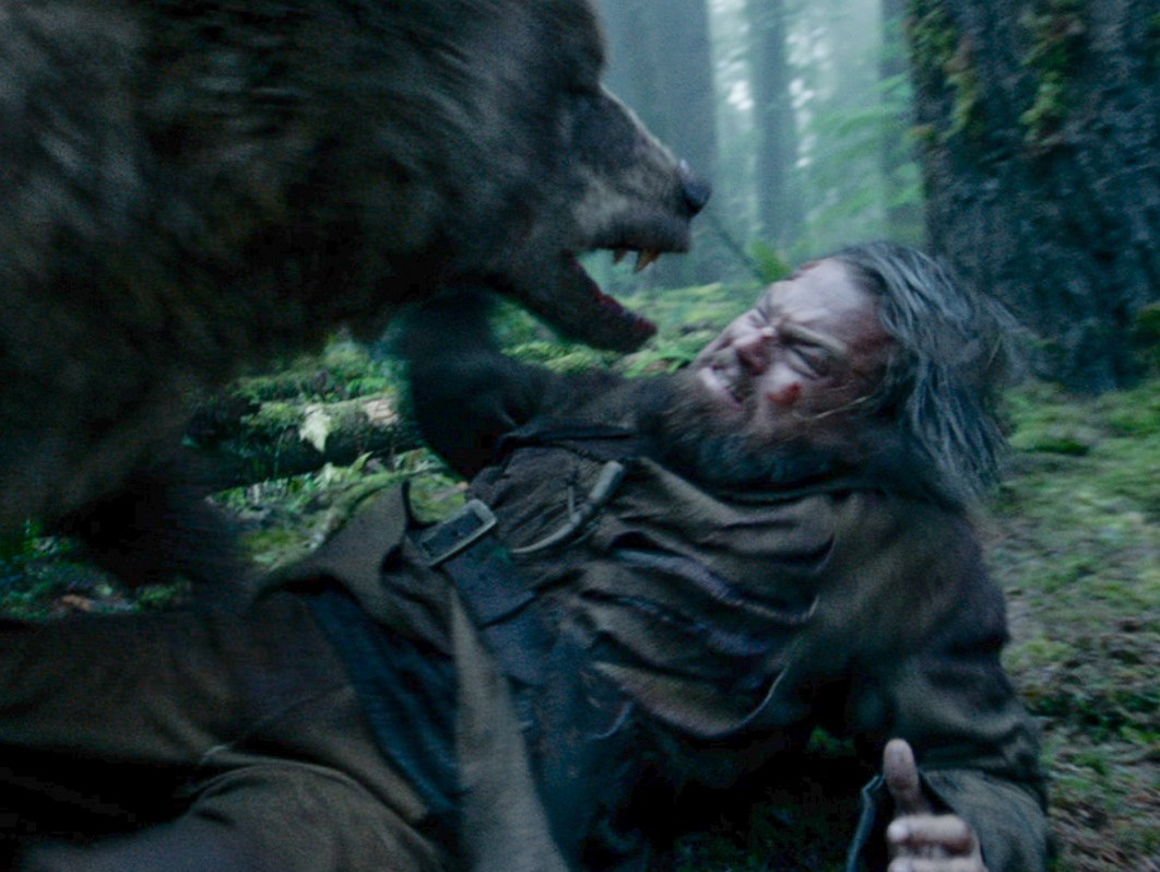 dcap bear maul